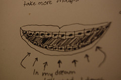 teeth dream photo